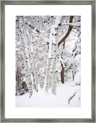 Aspen Snow Framed Print