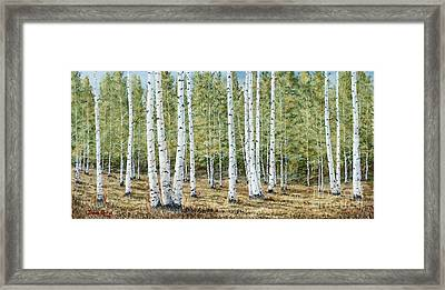 Aspen South Saddle Blue Mtn 24 X 48 Framed Print