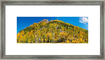Aspen Trees On Mountain, Ophir Pass Framed Print by Panoramic Images