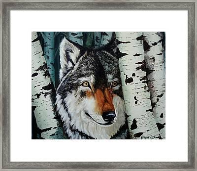 Aspen Wolf Framed Print