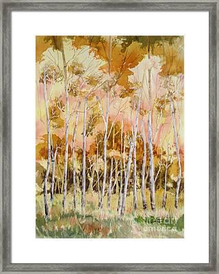 Aspens 2 Framed Print by Mohamed Hirji