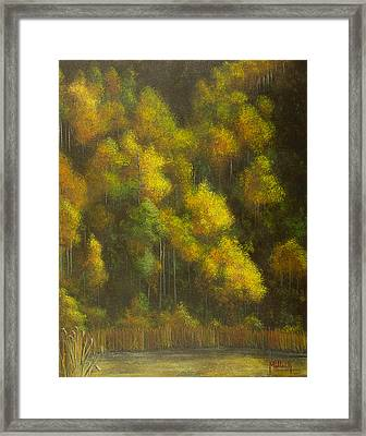 Aspens And Cattails Framed Print by Jack Malloch