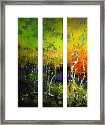 Aspens In Season Framed Print