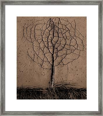Asphalt Tree Framed Print by Rasto Gallo