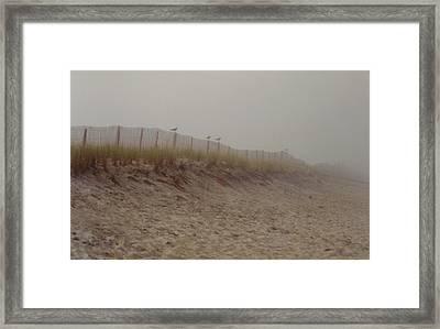 Assateague Dunes Framed Print by Joann Renner
