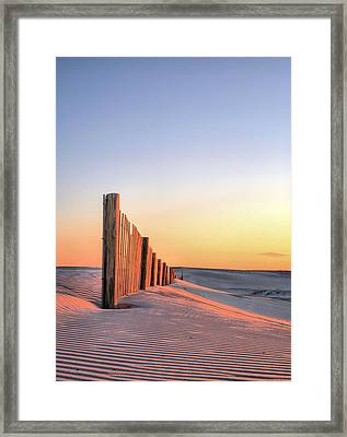 Assateague Orange Framed Print