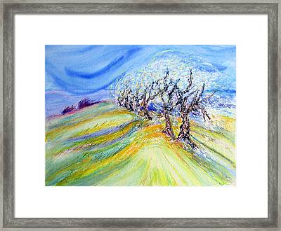 Assisi Wind Framed Print by Sarah Hornsby