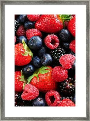 Assorted Fresh Berries Framed Print by Elena Elisseeva
