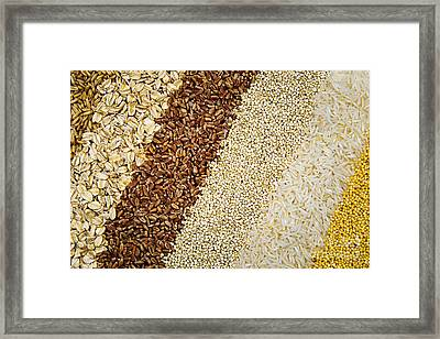 Assorted Grains Framed Print