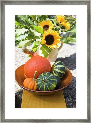 Assorted Squashes In Bowl And Sunflowers In The Open Air Framed Print