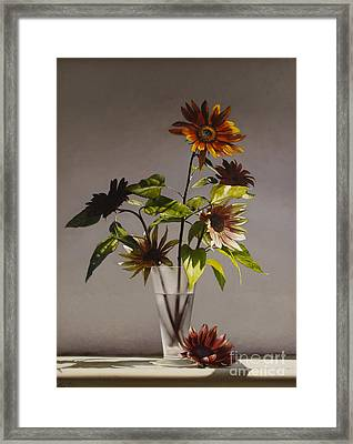Assorted Sunflowers Framed Print by Lawrence Preston