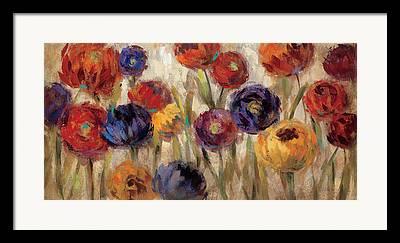 Aster Flower Framed Prints
