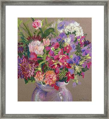 Asters Framed Print by Joan Thewsey