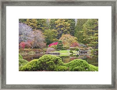 Asticou Azelea Garden - Northeast Harbor - Mount Desert Island - Maine Framed Print by Keith Webber Jr