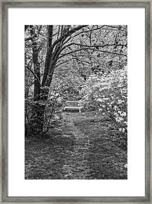 Asticou Azelea Garden On Mount Desert Island Maine Framed Print