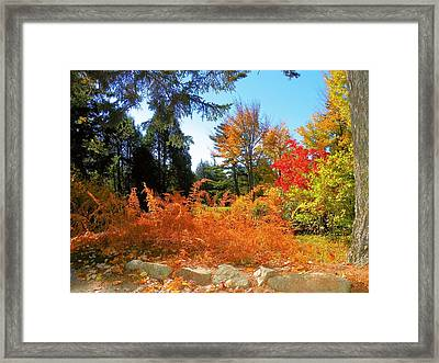 Framed Print featuring the photograph Asticou by Gene Cyr