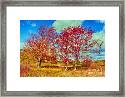Astonishing Autumn - Fall Colors At Dolly Sods II Framed Print by Dan Carmichael