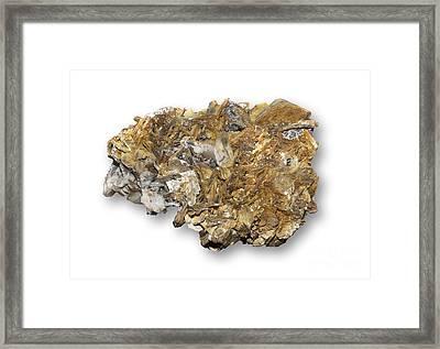 Astrophyllite Mineral Framed Print by Dirk Wiersma