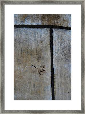 Framed Print featuring the photograph At An Impass by Jani Freimann