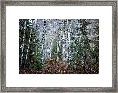 At Angles Framed Print