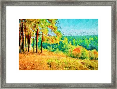 At Autumn Framed Print by Yury Malkov