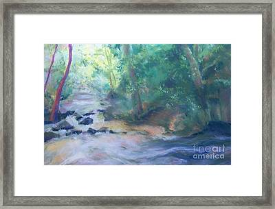 At Bob's Creek Framed Print by Mary Lynne Powers