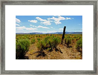 At Country  Framed Print by Tim Rice