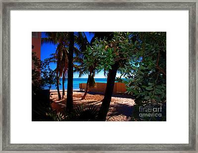 At Dog's Beach In Key West Framed Print by Susanne Van Hulst