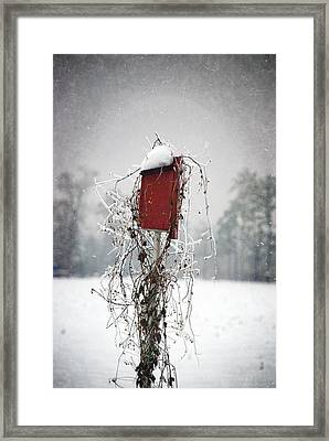 At Home In The Snow Framed Print