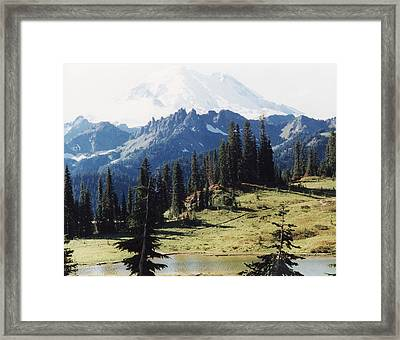Framed Print featuring the photograph At Mt. Rainiers Feet by Myrna Walsh