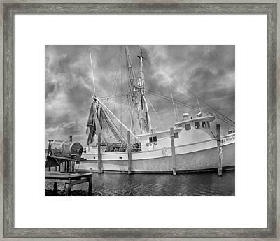 At Rest In The Harbor Framed Print by Betsy Knapp