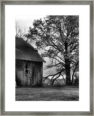 At The Barn In Bw Framed Print