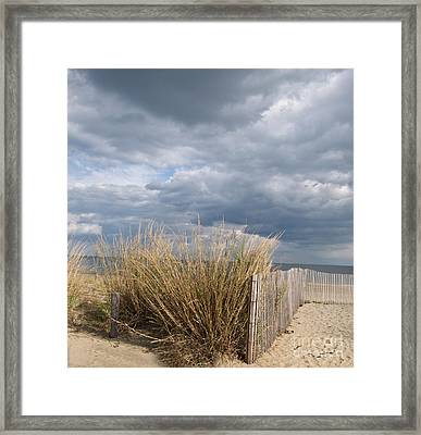 At The Beach Framed Print by Arlene Carmel