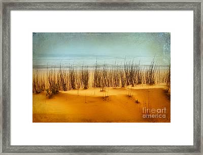At The Beach - Outer Banks II Framed Print by Dan Carmichael