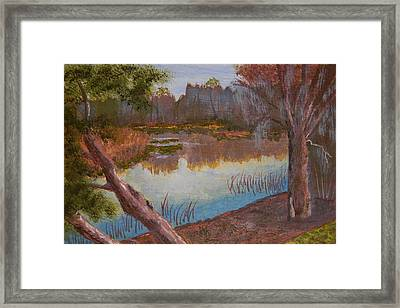 At The Bend On The Ocklawaha  Framed Print by Warren Thompson