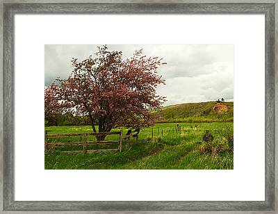 At The Corner Of The Field Framed Print by Jeff Swan