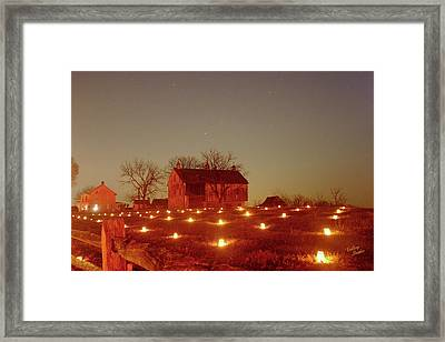 At The Cornfield 12 Framed Print by Judi Quelland