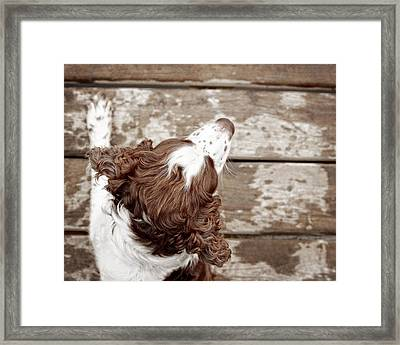At The Dock Framed Print