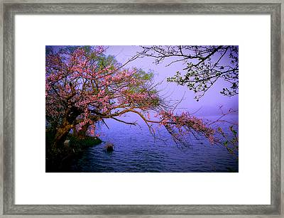 At The Edge Framed Print by William Walker