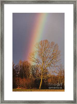 At The End Of The Rainbow Framed Print
