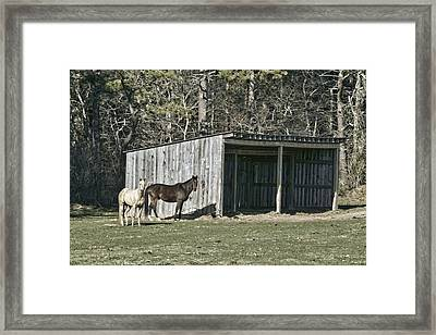 At The Far  End Framed Print by Constantine Gregory