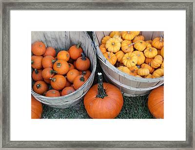 At The Farmer's Market 4 Framed Print by Mary Bedy