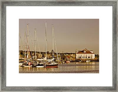 At The Harbor - Martha's Vineyard Framed Print