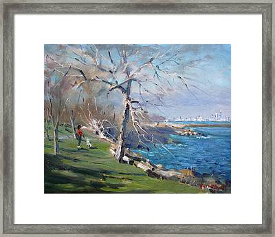 At The Park By Lake Ontario Framed Print by Ylli Haruni