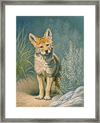 At The Play Den Framed Print by Paul Krapf