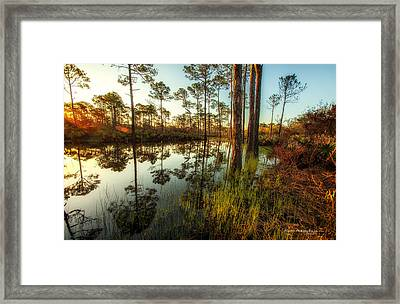 At The Sunrise Framed Print by Volker blu Firnkes