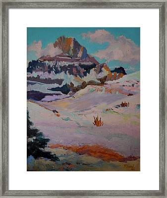 At The Top - Glacier National Park Framed Print by Francine Frank