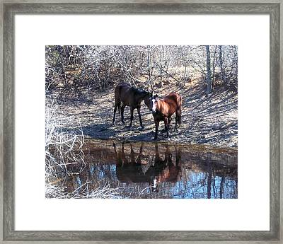 At The Water Hole Framed Print by Rosalie Klidies