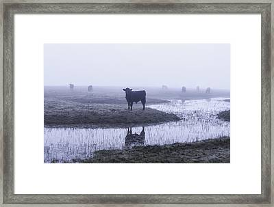 At The Watering Hole Framed Print