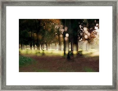 Framed Print featuring the photograph At The Yarkon Park Tel Aviv by Dubi Roman